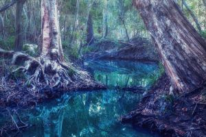 Emerald Waters by Questavia