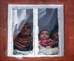 3generation and window of life by emrebo