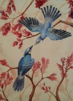 Courtship Jays by cathykitcat