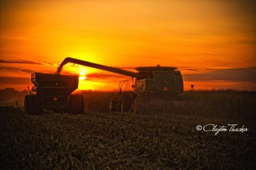 Harvest Sunset 15 by cthacker