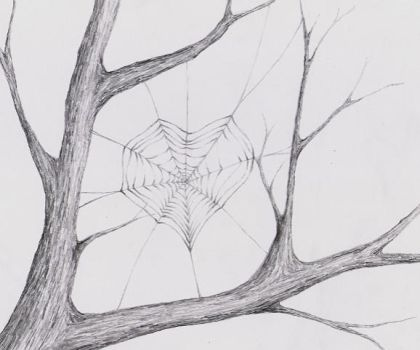 Web by Cammo7495