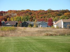 Autumn 2014 in Minnesota - 04 by CatComixzStudios