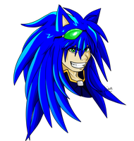 Sonic Redesigned by Hylian-Rinku
