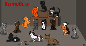 BloodClan Cats by Angel-star143