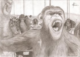 Rize of the planet of the apes by Alwin1990