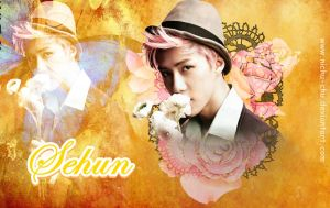 Rose Sehun Wallpaper by Nichu-Chu