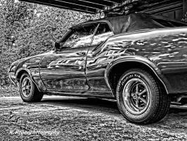 cutlass by wroquephotography