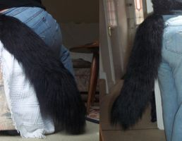 Khyle's Tail by NecoStudios