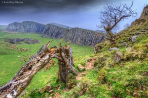 Hadrians Wall 79 by fatgordon0