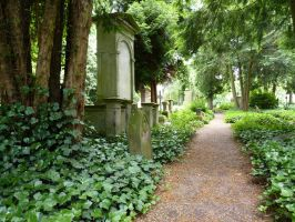 Cemetery in Forest by Maryl0u