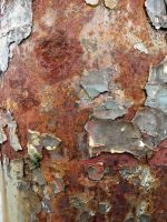 Got to love Rust and Flakes by IdunaHaya-Stock