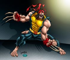 Wolverine_ by RossHughes