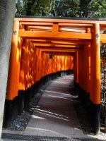 Torii 9 by thecomingwinter