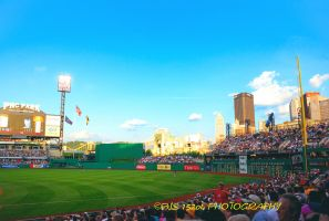 Box seats PNC Park by pjs15204