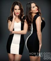 The Bella Twins by UniqueOneDesigns