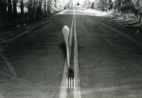 Fork in the Road - AP by Patches614