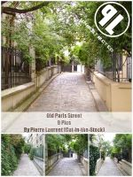 Old Paris Street-Unrestricted by Cat-in-the-Stock