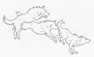 free wolf line art by WhiteK9