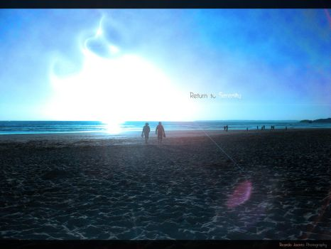 Return to Serenity by Absinto10