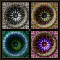 20130416-Pattern-On-A-Theme-Quadtych-v4 by quasihedron