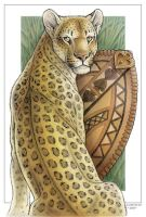 Wild Cat Cards - Leopard by synnabar