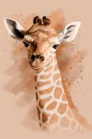 Baby Giraffe by Art-4evah