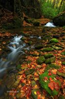 Autumn on Rocky Fork by TRBPhotographyLLC