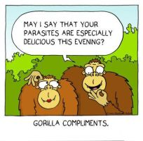 gorilla compliments by The-Sardonics