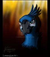 Commission: Glaring Novia by Lannean