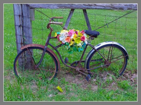Bicycle flower basket. L1050003, with story by harrietsfriend