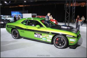 Dodge Challenger SRT Rally_3 by PrimalOrB