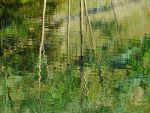 Abstract Autumn~Reflections II by Rocky4art