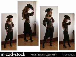 Pirates - Barbarian Queen Pack 7 by mizzd-stock