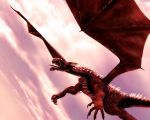 Red Dragon by argel1200
