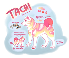New Character - Tachi by kandee-cane