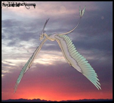 Springnight Diver Concept Wyvernoid -Colored- by SpringnightAkuma