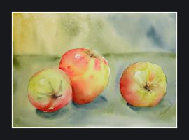 Apples by stokrotas