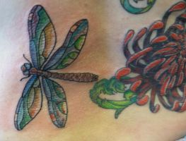 dragonfly detail by hoviemon