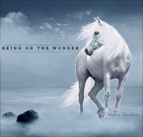 Bring on the Wonder by Sigath
