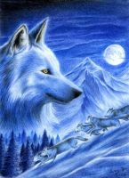 Wolfs in Snow by Doll-Core
