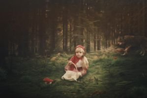 Little Red Riding Hood by blumilein