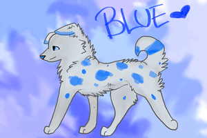 Blue by XSuperkittyX