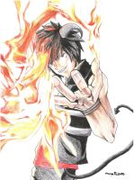 Flames of Awesomeness by Orenji--kun