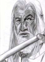 Mithrandir -- Gandalf by leiaskywalker83