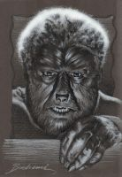 The Wolfman by Buchemi