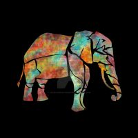 color elephant by jewles654