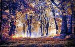 Autumn Magic by montag451
