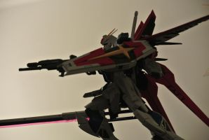 1/100 MG Force Impulse Gundam by Shinseigo-Takashi