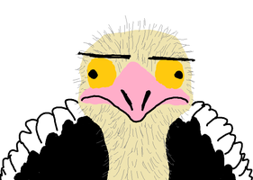 Ostrich child. by TheSoulKeeperz