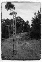 Ladders - Hill End IV by KateStehr